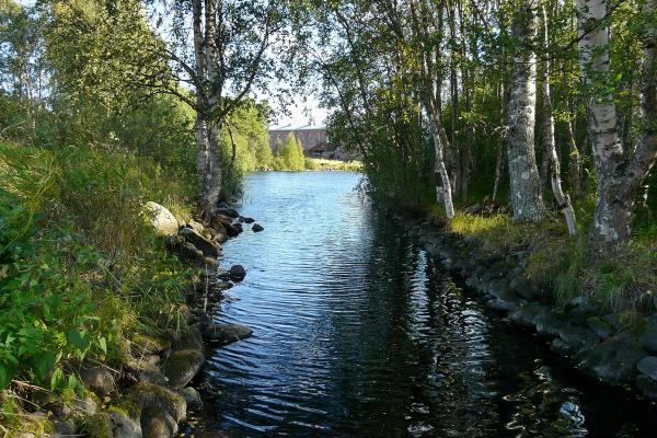Канал из оз. Долгое (Савватьевское).