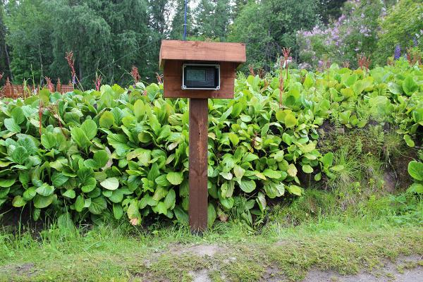Консоль метеостанции. Ботанический сад. 2012 год.