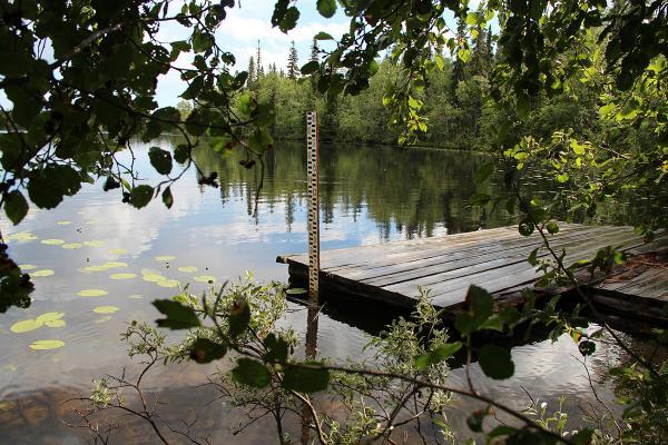 Мерная рейка для измерения уровня воды. Озеро Н. Перт. 2012 год.
