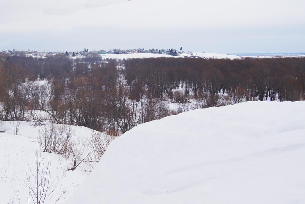 Панорама окрестностей деревни Сухарёво