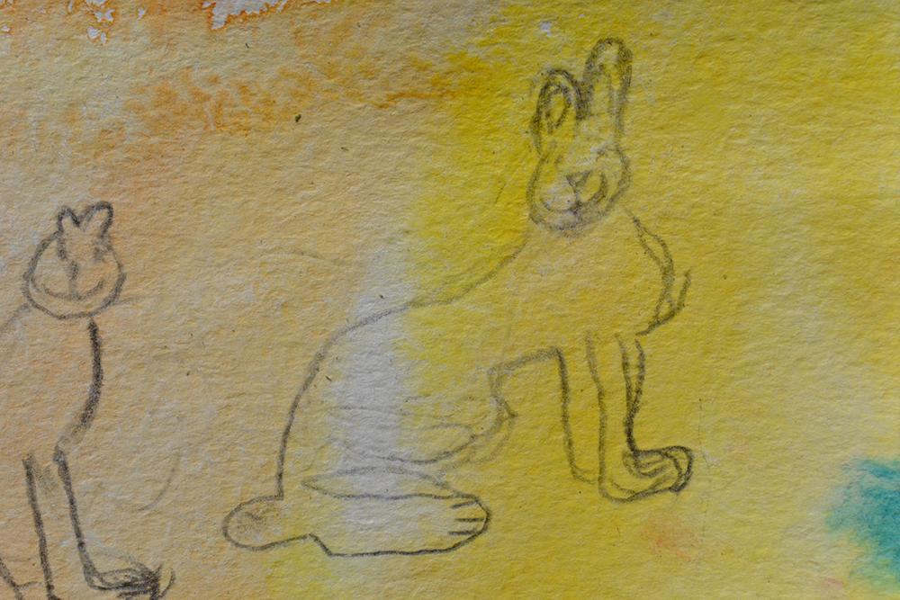 Соловецкие обитатели – радостные зайцы. Детский эскиз