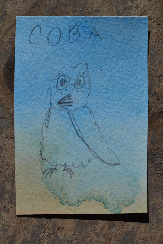Совушка соловецкая. Детский эскиз