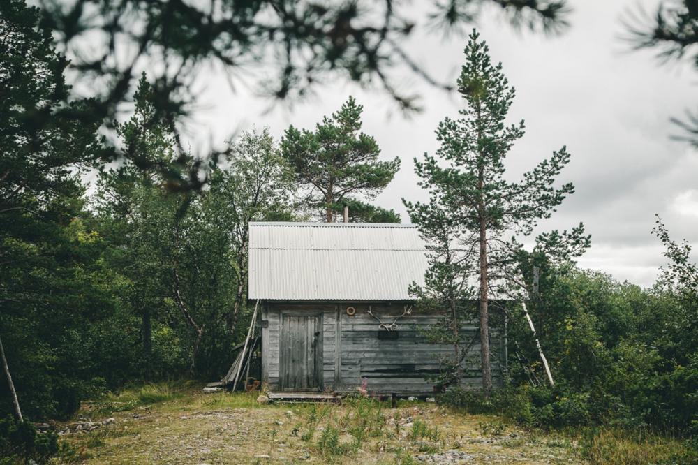 Лесной приют.
