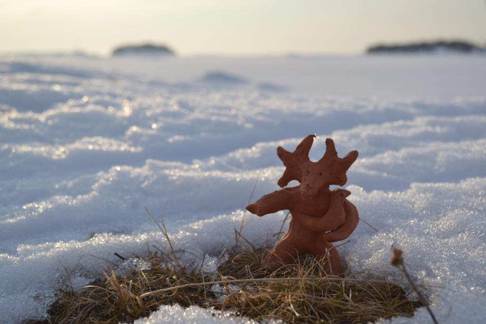 Лосик на берегу снежного моря
